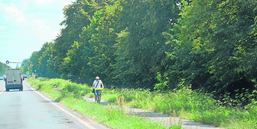 Ścieżką rowerową prowadzącą nad jezioro Miedwie rowerzystom nie jeździ się najlepiej. Po obu stronach pozarastała trawą