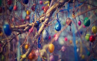 Pisanki na Wielkanoc to jeden z symboli świąt. Oznaczają nowe życie. Zwyczaj ozdabiania pisanek może połączyć całą rodzinę Zobacz kreatywne sposoby na