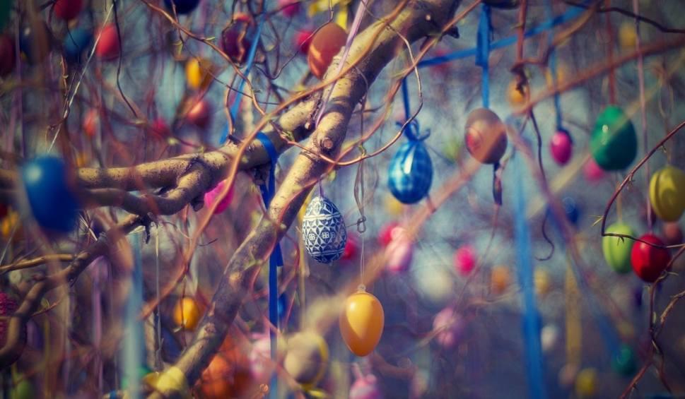 Film do artykułu: Pisanki wielkanocne ręcznie robione! Pomysły na ozdoby na Wielkanoc 2019 w wersji zrób to sam