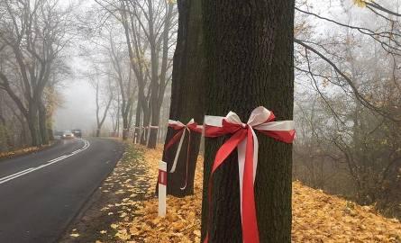 W ubiegłym tygodniu pisaliśmy o planowanej wycince drzew na grobli w Puszczykowie. Drzewa miałyby zniknąć, gdy powstawać będzie nowa ścieżka rowerowa