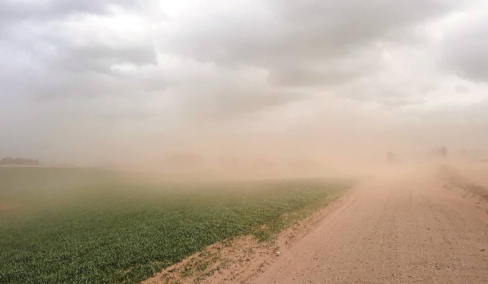 Film do artykułu: Burza piaskowa pod Bytowem. Prawie jak na Saharze (ZDJĘCIA, WIDEO)