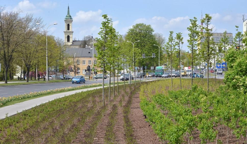 Film do artykułu: W Kielcach wiosna przyjdzie później. Winny klimat i susza [ZDJĘCIA]