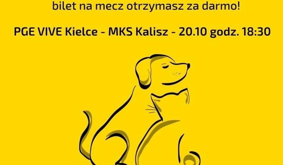 Film do artykułu: Na mecz PGE VIVE Kielce można  wejść za darmo. Pod warunkiem…