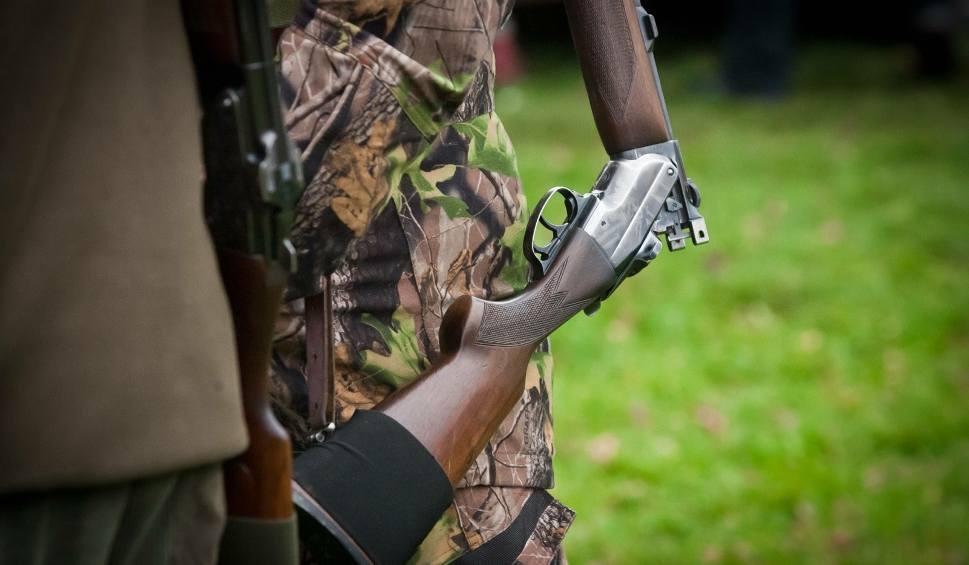 Film do artykułu: Wojewoda lubelski zakazał zbiorowych polowań. Wszystko przez afrykański pomór świń