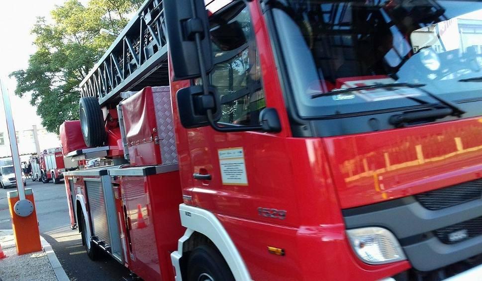 Film do artykułu: Pożar wysypiska śmieci i samochodu - bydgoscy strażacy w akcji