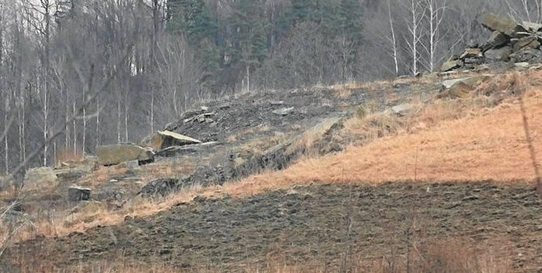 Właśnie w tym miejscu, na wzgórzu w Skawinkach, miałby działać kamieniołom. Ma swoich przeciwników i zwolenników