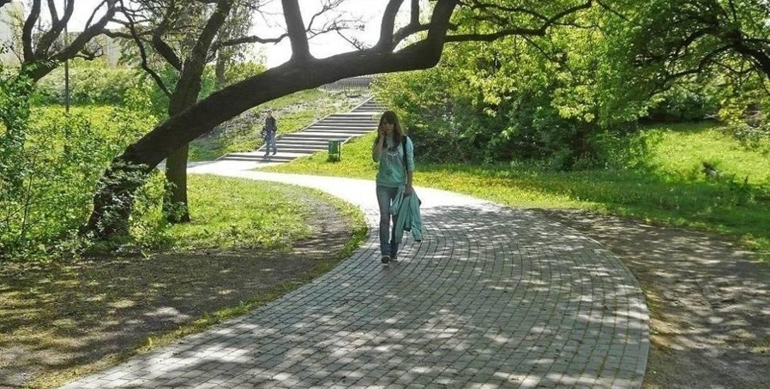 zieleń w mieście