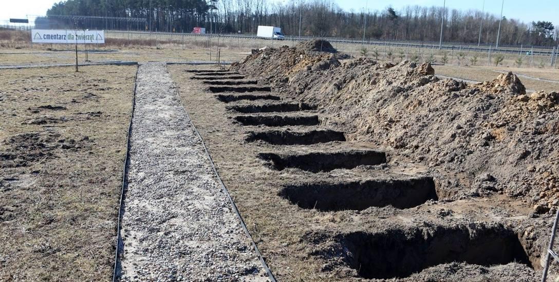 Szczecińskie grzebowisko jest już praktycznie gotowe do oddania. Cmentarz dla zwierząt mieści się przy ul. Bielańskiej 31 w Kluczu