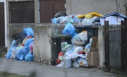 Wiemy, kto będzie odbierał śmieci w Poznaniu i okolicznych gminach