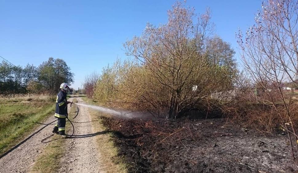 Film do artykułu: Gorlice. Puściliśmy z dymem ponad dziesięć tysięcy złotych - może chłód ukróci podpalenia suchych traw i łąk