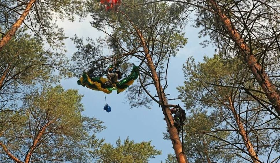 Film do artykułu: Piła: Spadochroniarz zaplątał się w koronę drzewa. Musieli go ratować strażacy [ZDJĘCIA]