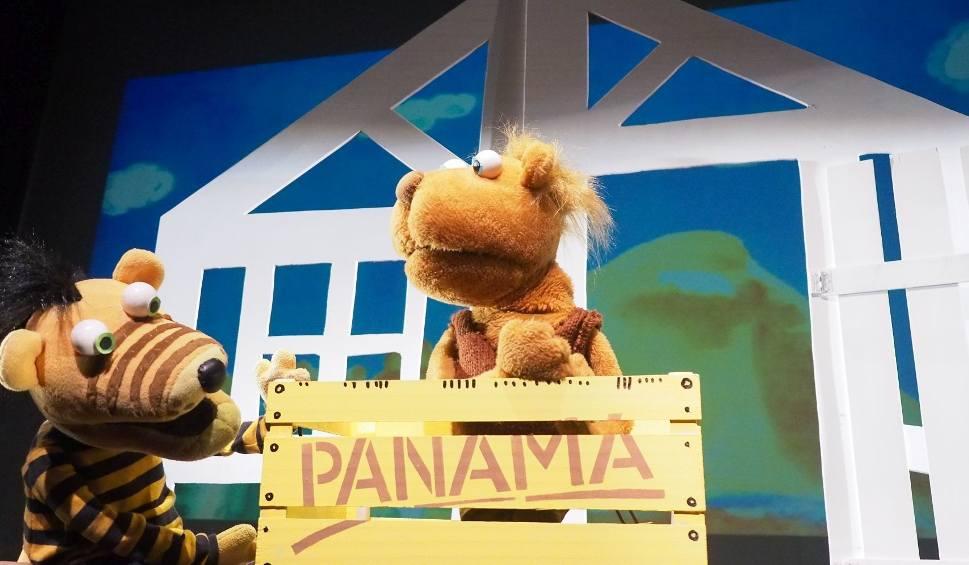 Film do artykułu: Białostocki Teatr Lalek. Ach, jak cudowna jest Panama Janoscha już na dużej scenie (zdjęcia, wideo)