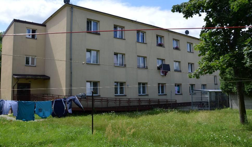 Film do artykułu: Stalowa Wola. Sąsiedzki Eko Azyl z mini ogródkiem przy bloku socjalnym