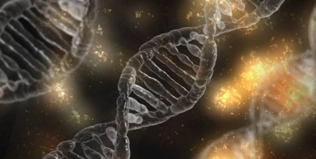 Kod DNA sprawił, że nie ma już zbrodni doskonałych