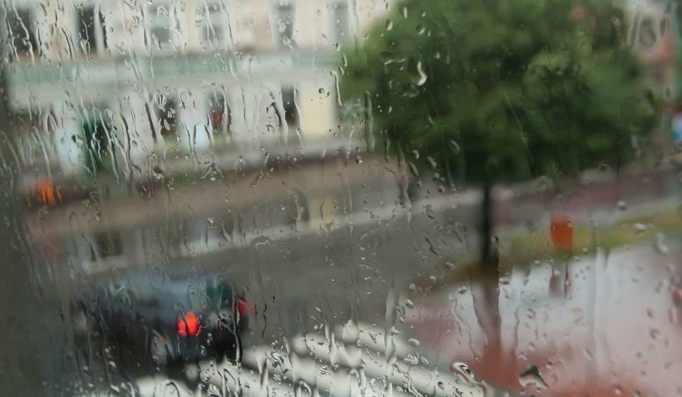 Film do artykułu: Pogoda w Łodzi i w regionie. Sprawdź prognozę na czwartek [WIDEO]