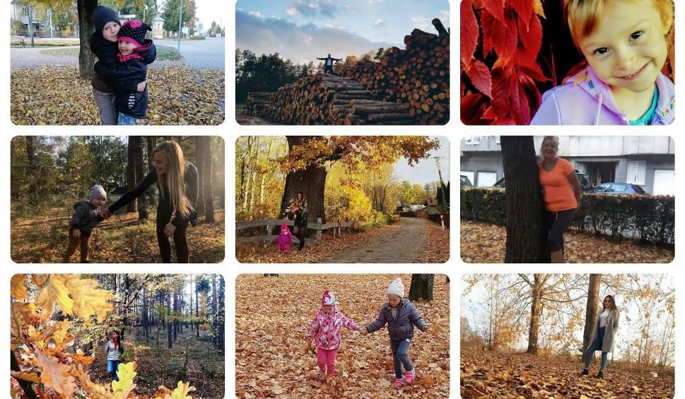 Film do artykułu: Tak pięknie wygląda jesień na waszych zdjęciach [GALERIA]