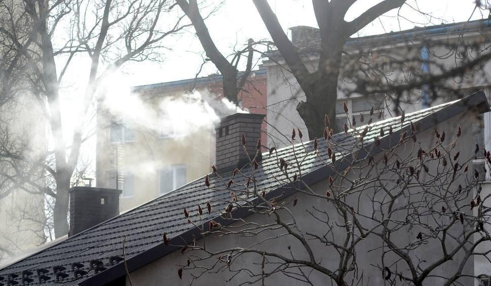 Film do artykułu: Toksyczny dym. Interweniują strażnicy miejscy. Czym można palić?
