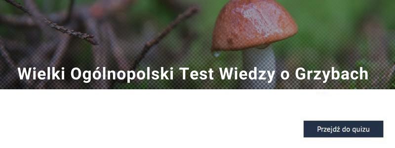 http://www.polskatimes.pl/quiz/5854,jestes_gotowy_na_sezon_grzybowy_sprawdz_sie_w_wielkim_ogolnopolskim_tescie_wiedzy_o_grzybach_quiz,q,t.html