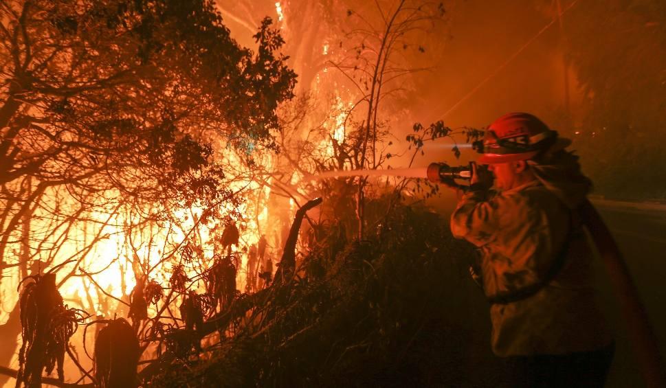 Film do artykułu: USA: Niszczycielskie pożary w Kalifornii. Zginęło co najmniej 31 osób, jest blisko 230 zaginionych [WIDEO] [ZDJĘCIA]