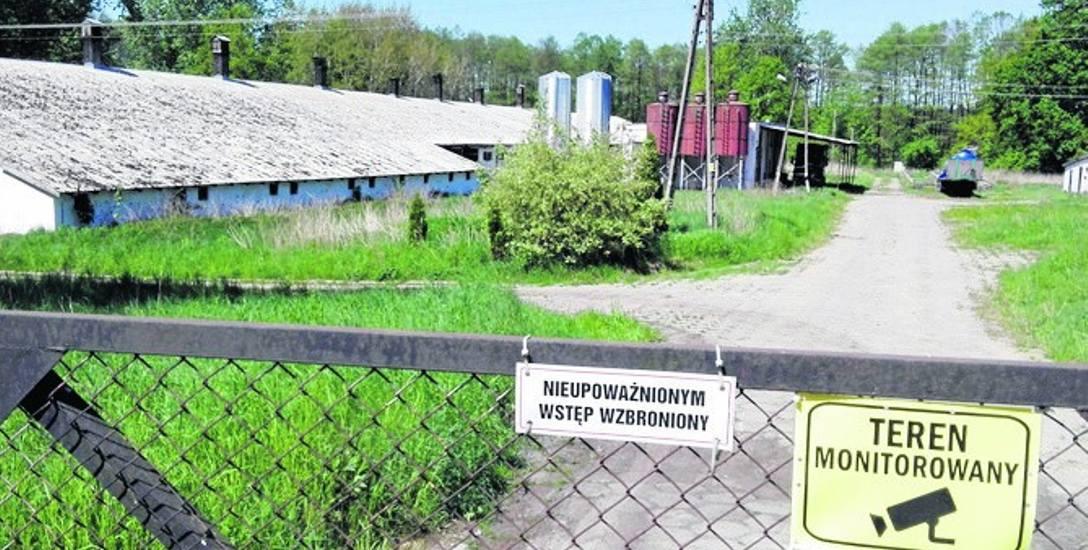 Duża popegeerowska świniarnia działa w środku wsi. Powinna być przeniesiona, ale nic w tej sprawie się nie dzieje.