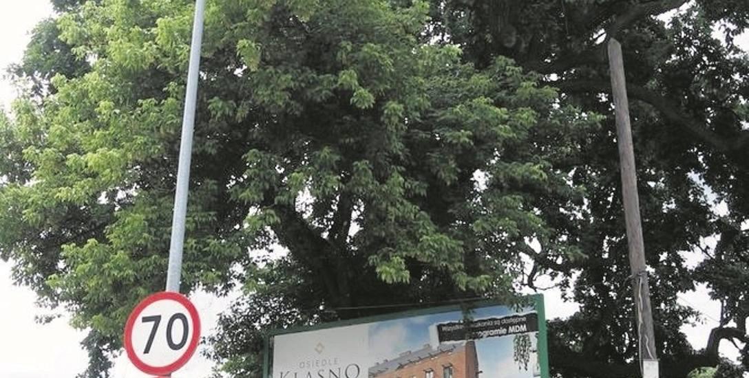 Przy ul. Zakopiańskiej 121 rośnie dąb Henryk, który jest uznany za pomnik przyrody. Według przyrodników ma około 240 lat.