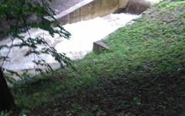 Park Oruński i okolice
