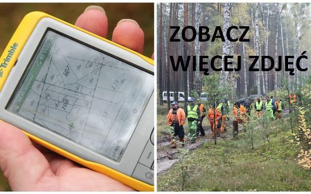 Szukali dzików w podwłocławskich lasach [zdjęcia, wideo]