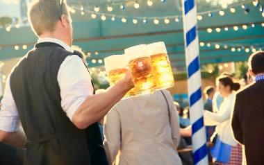 Odpowiemy na palące pytanie - czy piwo tuczy, czy nie? Oto praktyczne i bezużyteczne ciekawostki na temat piwa!
