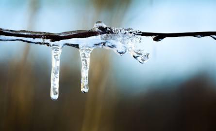 Ocieplenie w woj. lubelskim. Jaka temperatura w przyszłym tygodniu? Idzie wiosna? (WIDEO)