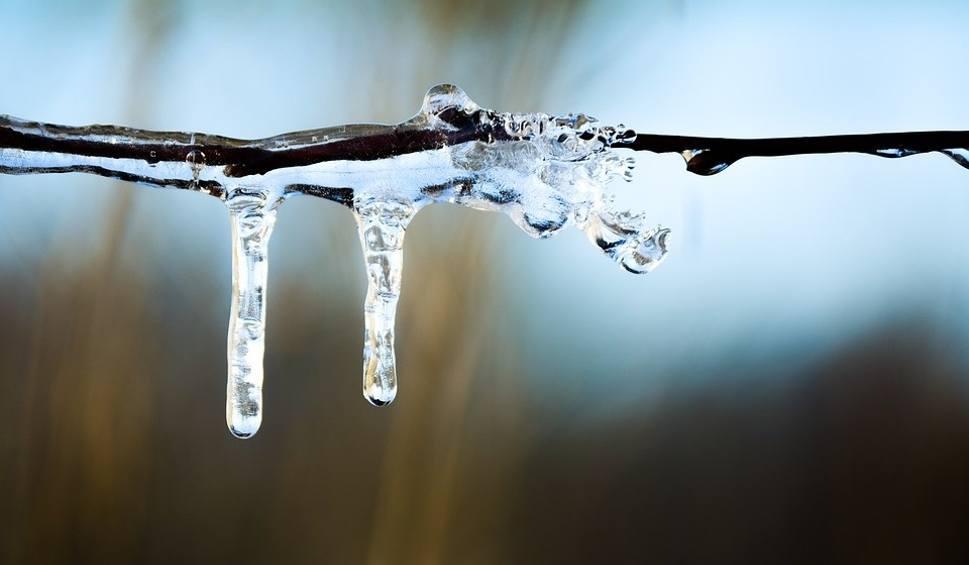 Film do artykułu: Ocieplenie w woj. lubelskim. Jaka temperatura w przyszłym tygodniu? Idzie wiosna? (WIDEO)