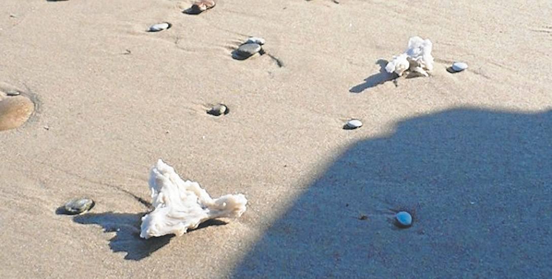 Dziwne białe bryły na plażach w powiecie sławieńskim. Co to za substancja?