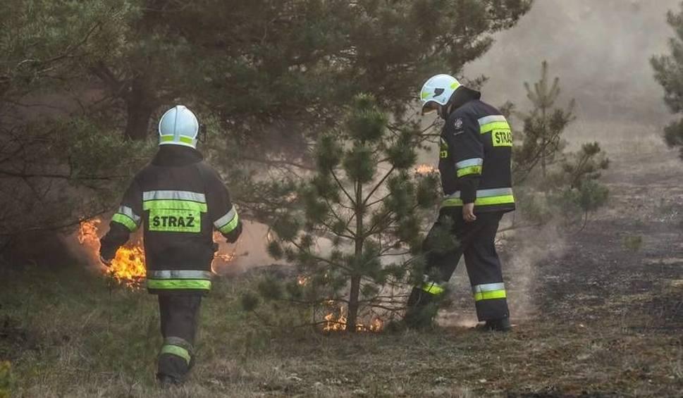 Film do artykułu: Pożar trawy i stodoły pod Bydgoszczą. Dwie osoby poszkodowane
