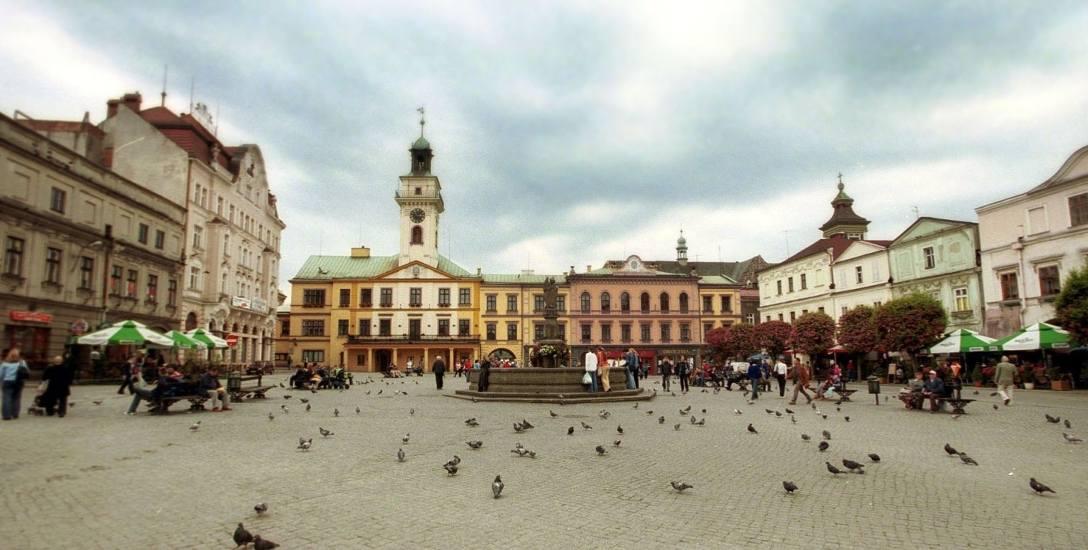 Ścisłe centrum Cieszyna zostało uznane za obszar zagrożenia wirusem wścieklizny. Szczególne środki ostrożności będą obowiązywały przez co najmniej trzy