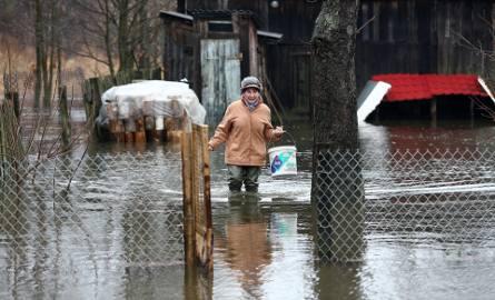 Rzeka Luciąża zalała podwórko Reginy Baryły z Przedborza