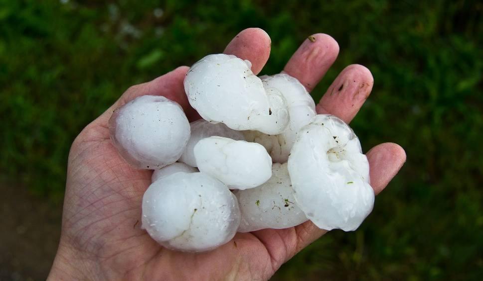 Film do artykułu: LUBUSKIE. Burze z intensywnymi opadami deszczu, gradem, porywisty wiatrem prognozuje dla regionu IMGW
