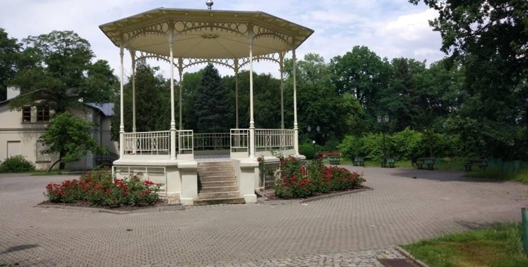 Spacer zakończy się w parku Źródliska.