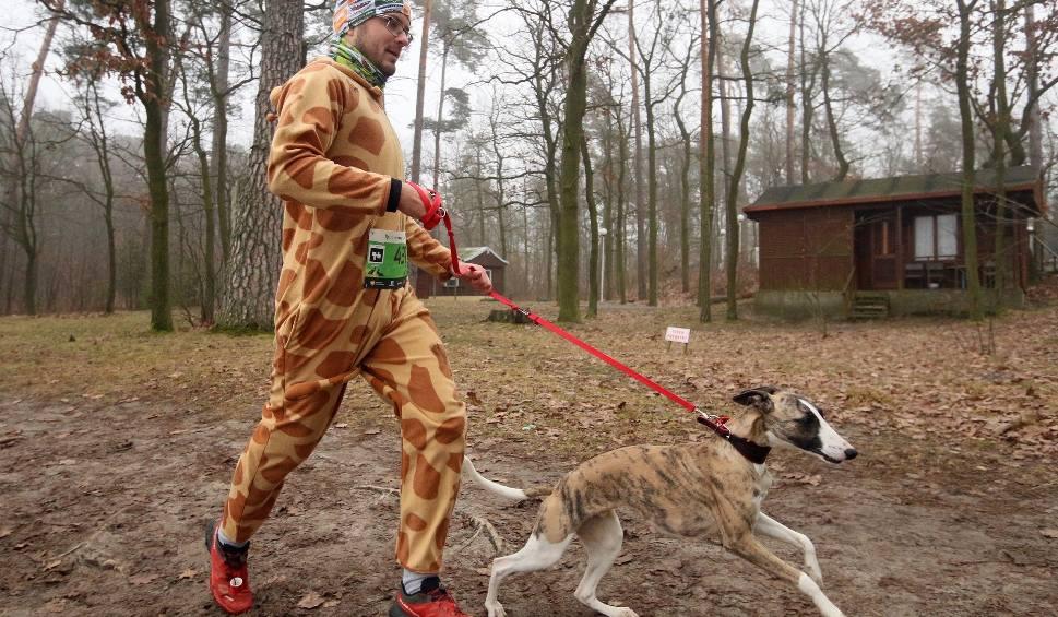 Film do artykułu: Bieg City Trail na Zalewem Zemborzyckim. Wygrał Filip Babik z Warszawy. Zobacz zdjęcia!