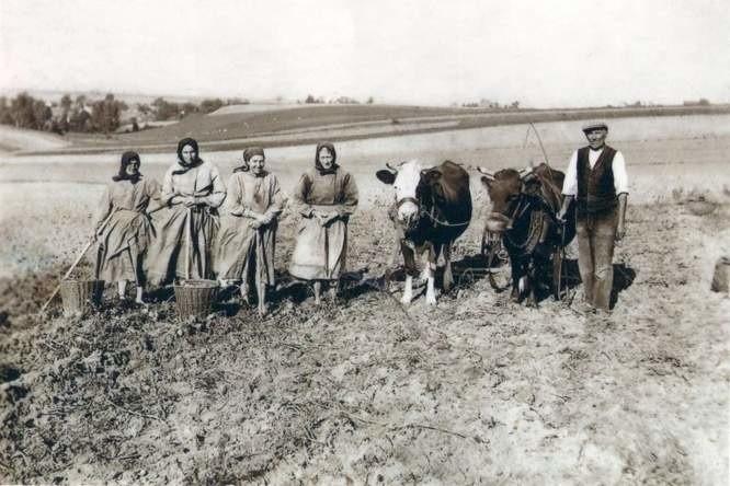 W ograbianych przez szabrowników opolskich wsiach stawić czoła mogły im właściwie tylko kobiety, inwalidzi i starcy