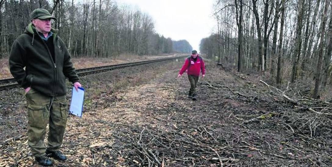 Stanisław Ryczek (z lewej) i Jan Rossa pokazują karczowisko po wycięciu drzew przy torach koło Godzimierza