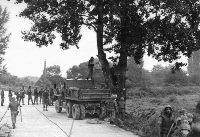 Ścinanie drzewa przez amerykańskich żołnierzy uwiecznione na zdjęciu