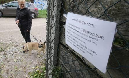 Wiadomości Echa Dnia. Szalony snajper strzela na kieleckim osiedlu!