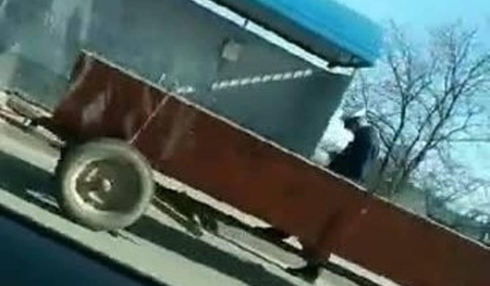 Film do artykułu: Gorzyce. Policjanci zatrzymali kierowcę bmw z Dwikóz, który ciągnął samochodem… wóz (WIDEO)