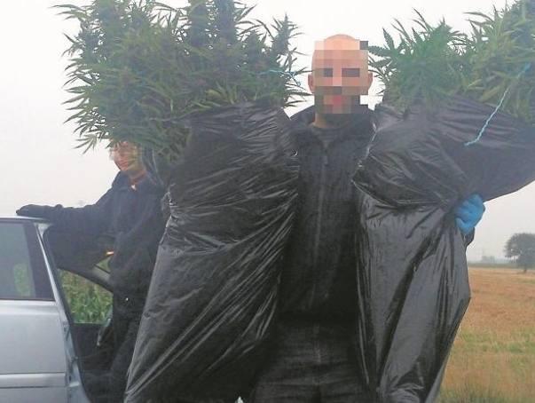 Na Retkini łódzcy policjanci do walki z przestępczością narkotykową urządzili zasadzkę nadilera handlującego marihuaną. Przestępca został zatrzymany