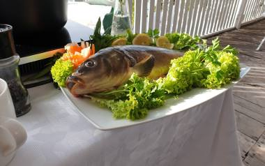 """Smaki Wielkopolski. Odcinek 10. Świeże ryby z łowisk przy restauracji """"Złoty Karaś"""". Przepis na zupę oraz ceviche z karpia"""