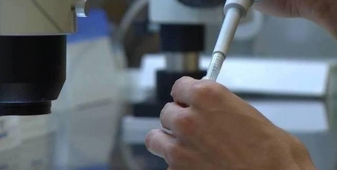 Więcej pieniędzy na leczenie metodą in vitro dla Szczecina