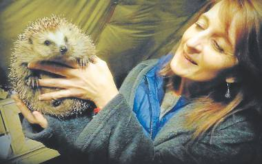 Beata Woźniacka: - Najłatwiej wyrządzić krzywdę jeżowi przez niewiedzę. Na przykład wywożąc go do lasu.