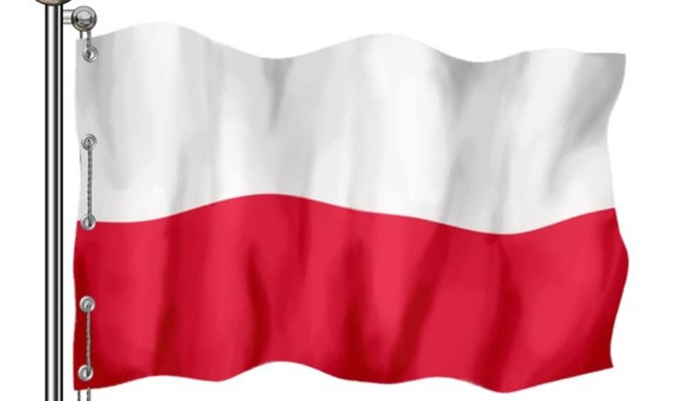 Film do artykułu: Dzień Flagi w Stalowej Woli. Ognisko i marsz nordic walking