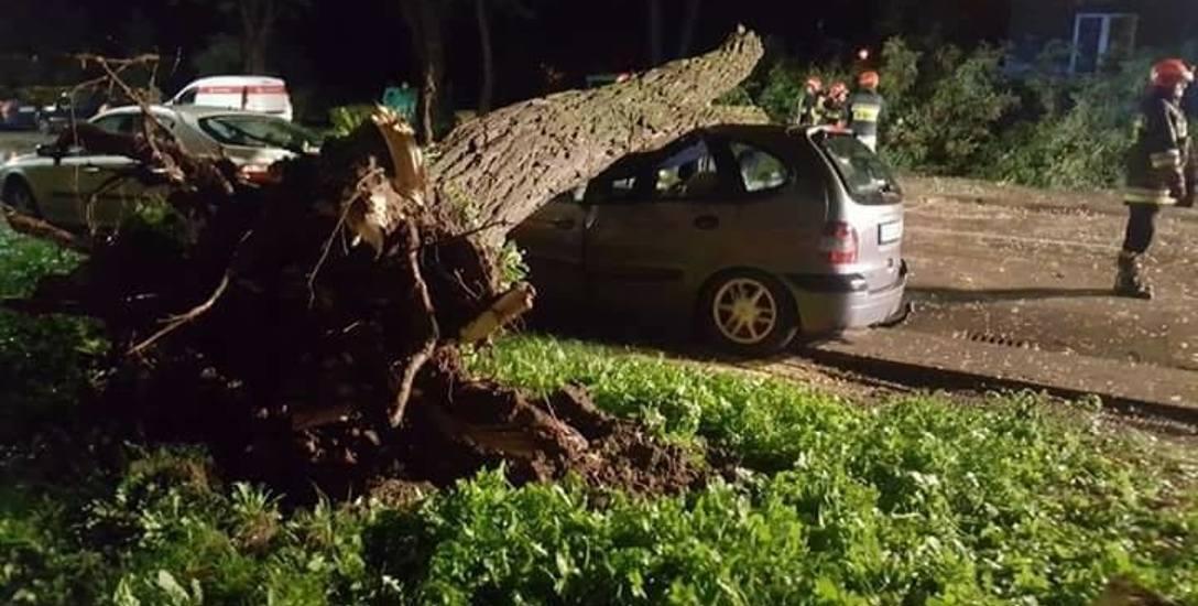 Orkan zrywał dachy, przewracał drzewa i słupy. Zabił dwie osoby