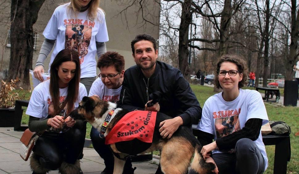 Film do artykułu: Marcin Dorociński pomaga kolejnemu psu z Torunia. Po Klifie czas na Alianta