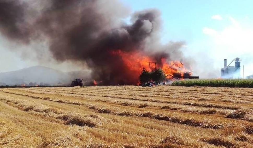 Film do artykułu: Pożar tartaku w Szybowicach. Prokuratura odmówiła wszczęcia śledztwa w sprawie hydrantu
